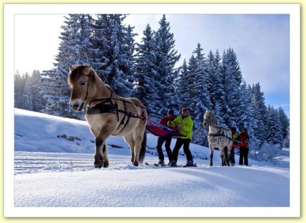 ski_joering-Les_portes_du_soleil